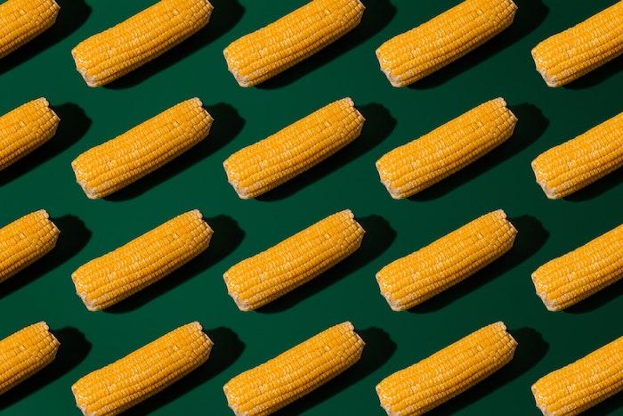 bild mit vielen gelban reifen maiskolben rezept für mexikanische gerichte mit gegrilltem und gegkochtem maiskolben