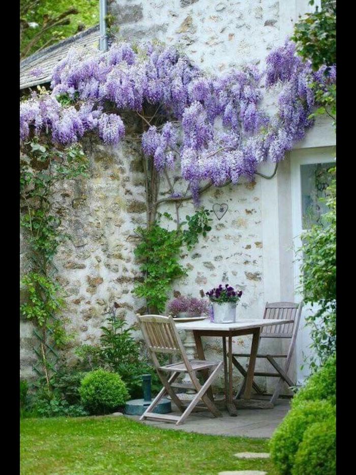 lila kletterpflanze kleiner garten ideen holztisch mit zwei stühlen wie kann ich meinen garten schöner machen