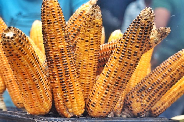 viele gelbe gegrillte maiskolben mexikanische gerichte mit gegrilltem maiskolben tipps maiskolben grillen