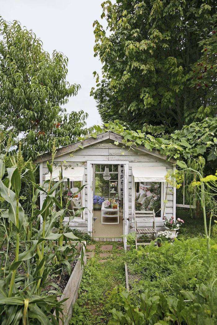 viele grüne pflanzen und bäume renoviertes kleines gartenhaus mit tisch und sofa außeneinrichtung ideen und inspiration
