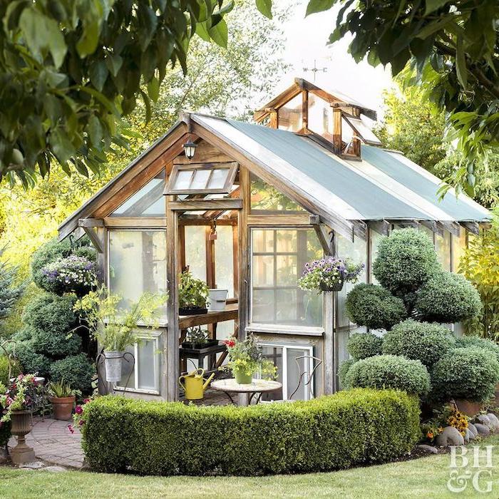 wie kann ich mein gartenhaus einrichten garten holzhaus mit durchsichtigen fenster viele grüne pflanzen und bäume