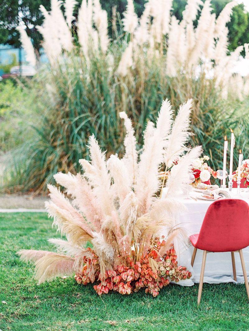 8 hochzeit dekoration pampasgras winterhart pflege informationen