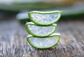 Aloe Vera essen – Wichtige Informationen und leckere Rezepte
