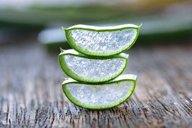 drei kleine stücke aloe vera essen leichte rezepte