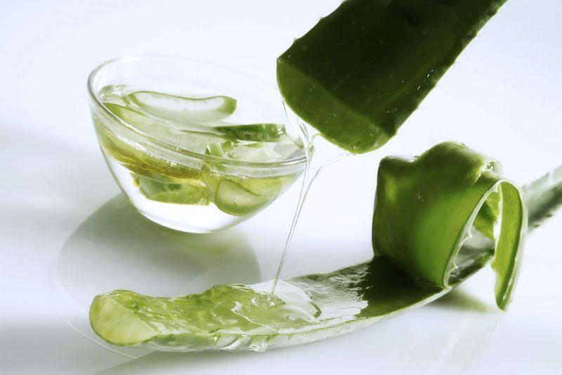 leichte rezepte kann man aloe vera essen