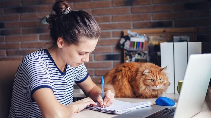 schreibtisch einrichten home office ausstattung büro ideen büro zuhause einrichten industrielles stil frau schreibt rothaarige katze auf dem schreibtisch