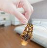 shaben bekämpfen natürliche mittel gegen kakerlaken schädlinge vertreiben