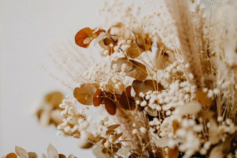 verschiedene trockenblumen deko mit trockenblumen