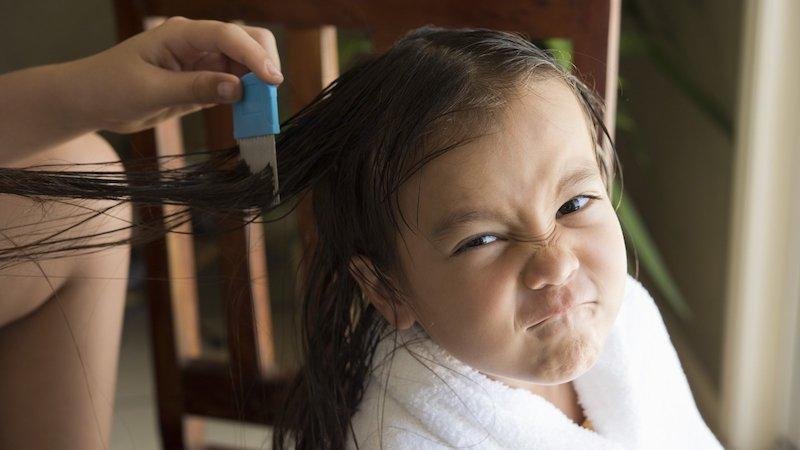 wütendes kind mutter kämmt haare mittel gegen läuse