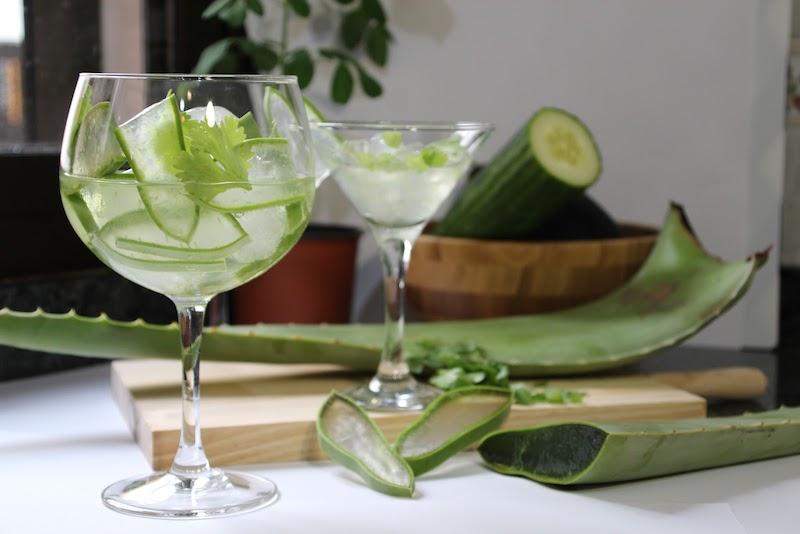 aloe vera produkte wie viel aloe vera saft pro tag zwei gläser aloe vera saft mit gurke