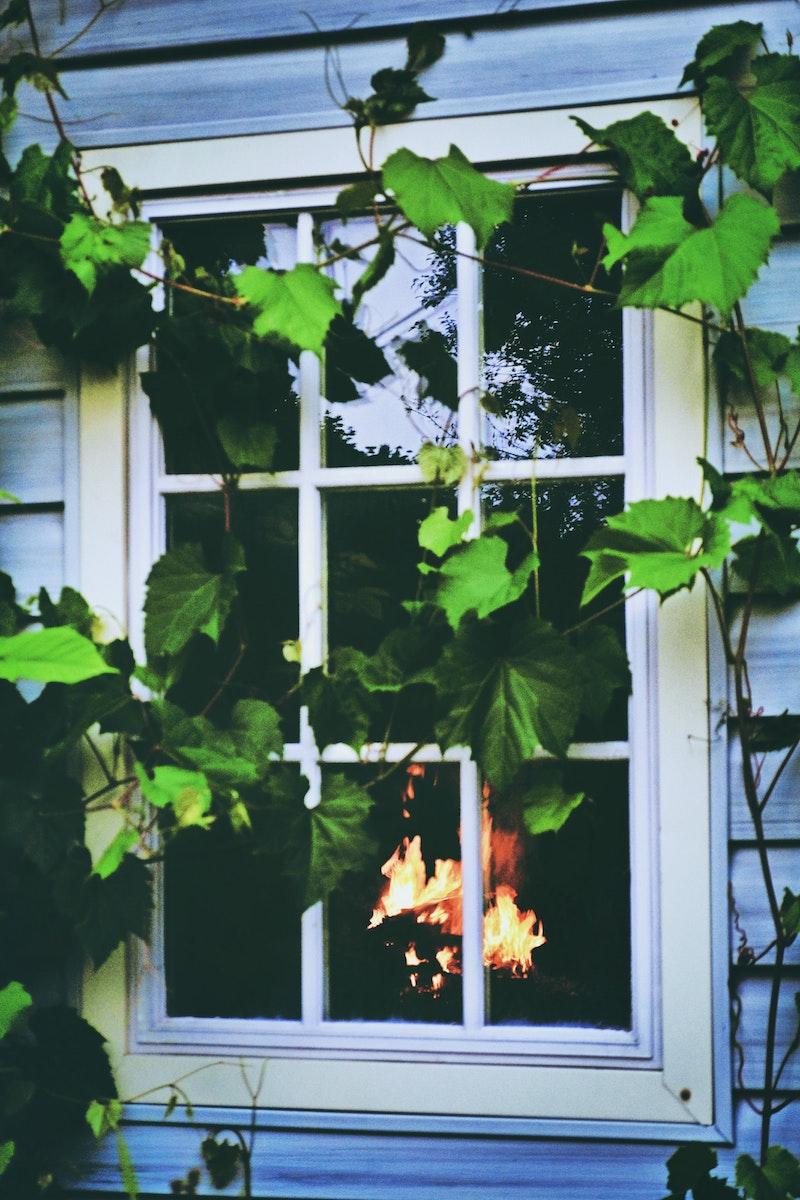 fenster preise fenster farben kunststofffenster weiß pflanzen feuer