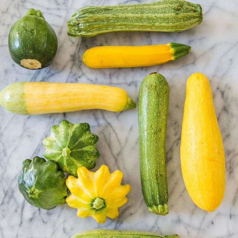 gelbe und grüne zucchini haltbar machen fruchtgemüse aufbewahren