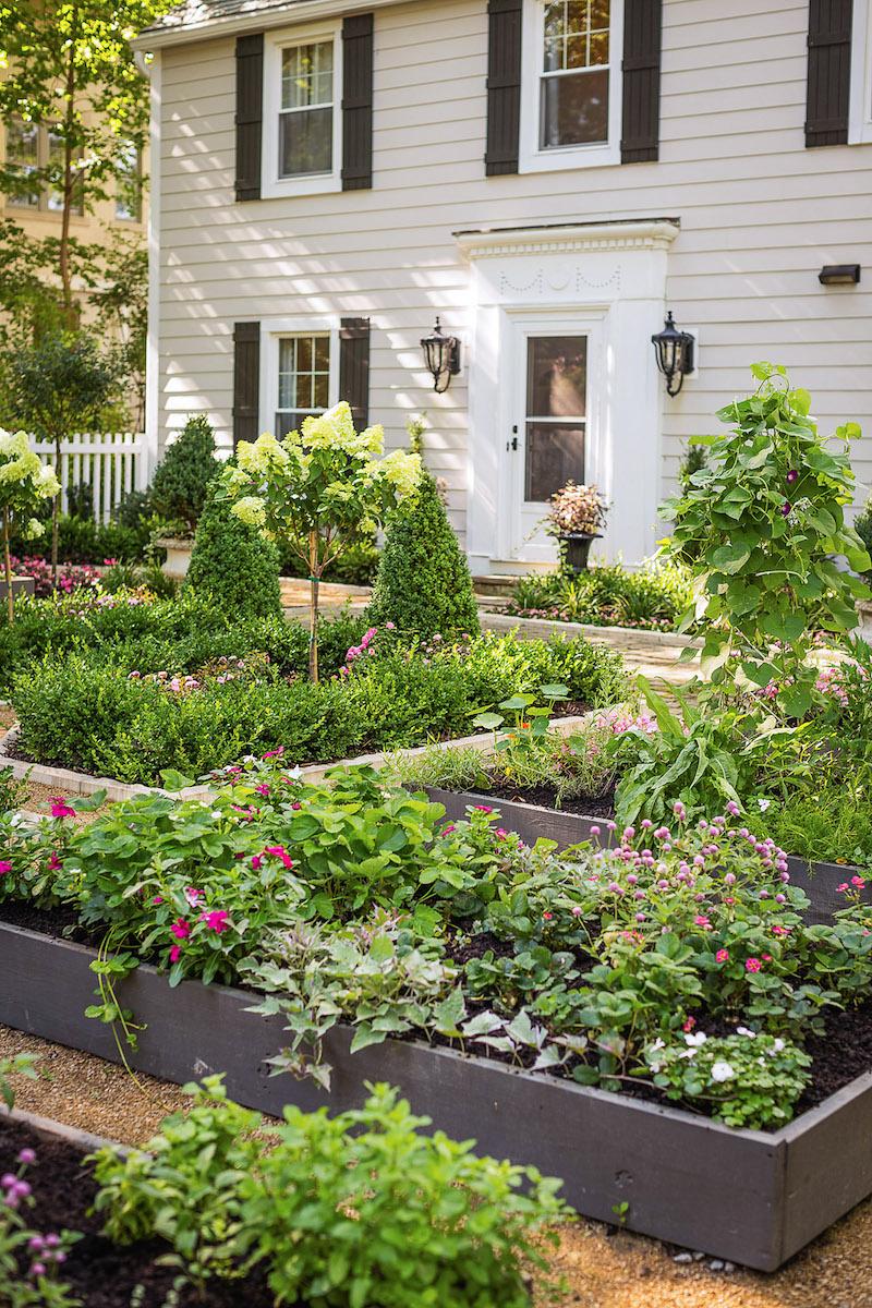 hauseingang-vorgarten-modern-gestalten-viele-bepflanze-pflanzen