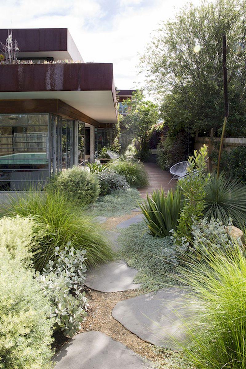 inspiration vorgarten gestalten modern mit vielen pflanzen ideen