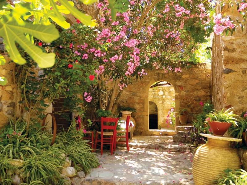 mediterrane pflanzen anlegen ein garten mit kürbissen ein stuhl aus holz violette blüten