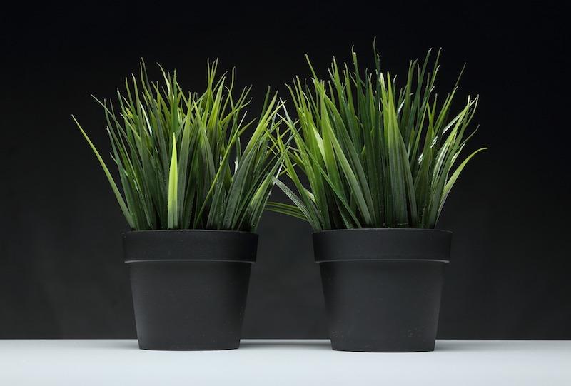 pflanzen deko kunstgras im topf kunstpflanzen discount kunstblumen hochwertig zwei töpfe kunstgras