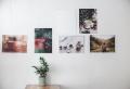 Kreative und moderne Wanddeko Ideen für Ihre Wohnung