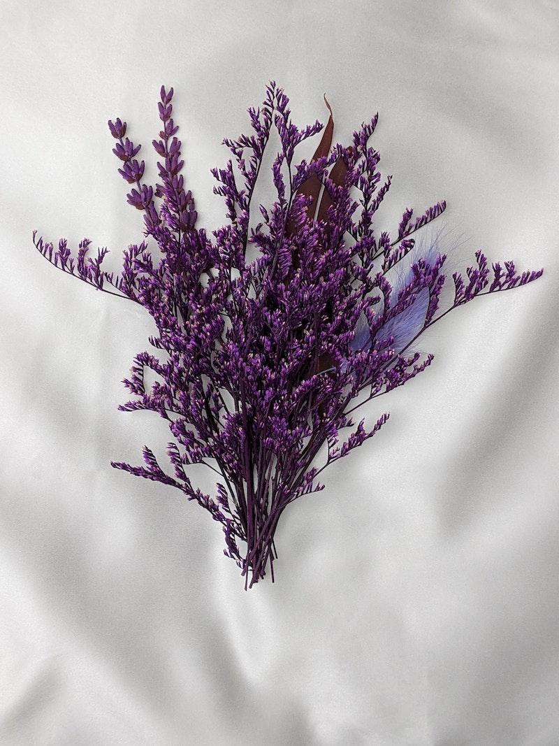 1 was passt zu lavendel lila blume garten blumen pflanzen