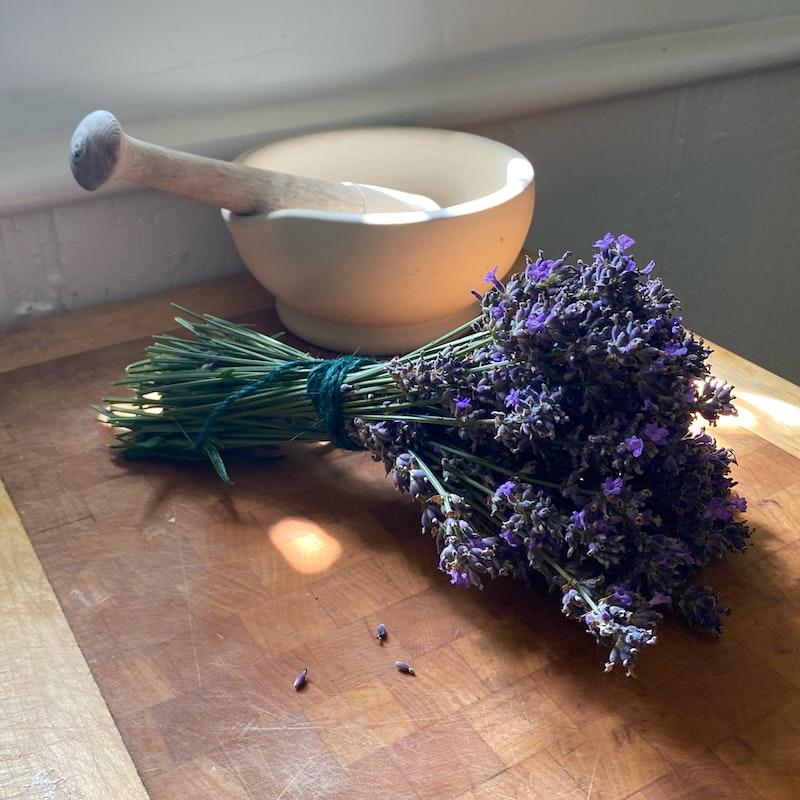bündel lavendel pflanzen garten einrichten schöne blumen