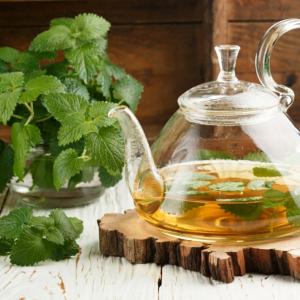eine kanne mit tee natürliche schlafmittel grüne pflanze