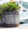kann man pflanzen direkt in übertopf pflanzen was sind pflanzentöpfe kuestenliebeshop blumentopf hoch aus holz mit metallringen