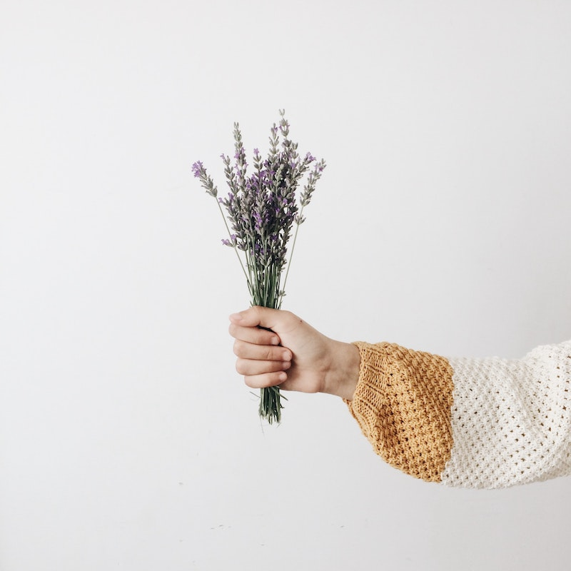 person hält bündel lavdel pflanzen garten einrichten ideen