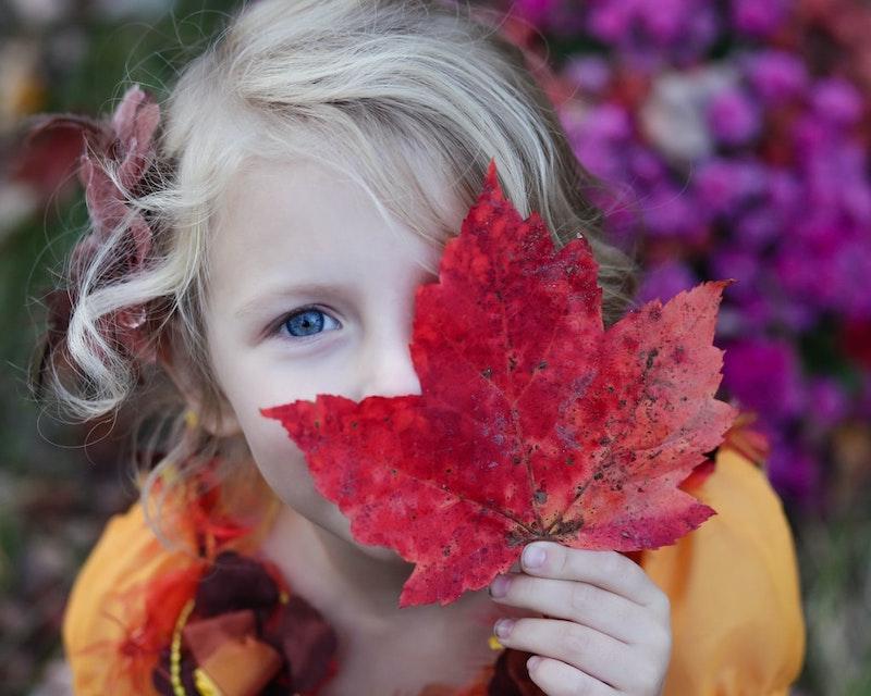 basteln mit blättern kleinkinder kind mit rotem blatt im freien