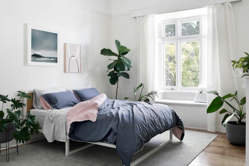 blaue bettwäsche schlafzimmer pflanzen wählen informationen