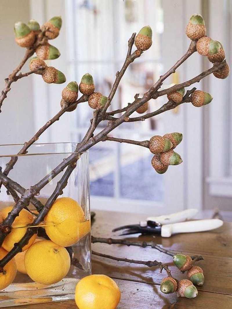 fensterdeko basteln mit kindern herbstdeko ideen vase mit zweigen eicheln zitronen
