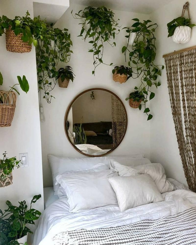 inspiration einrichtung luftreinigende pflanzen schlafzimmer ideen
